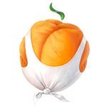 Sergey Denikin [Muscular Apricot]