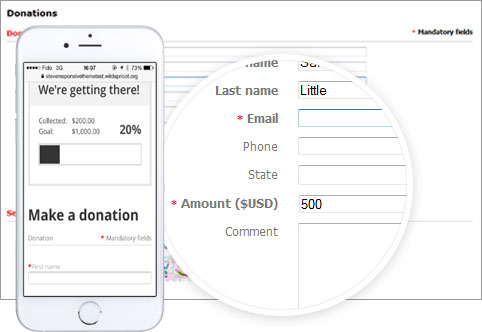 Online donation processing software