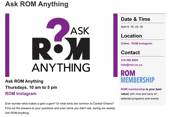 ask rom anything