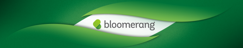 bloomerang fundraising software