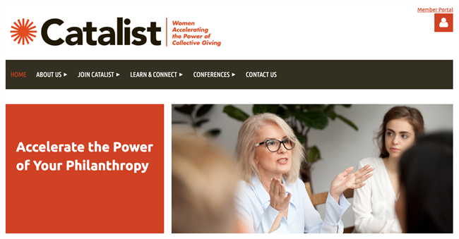 catalist best nonprofit website