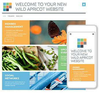 mobile nonprofit website