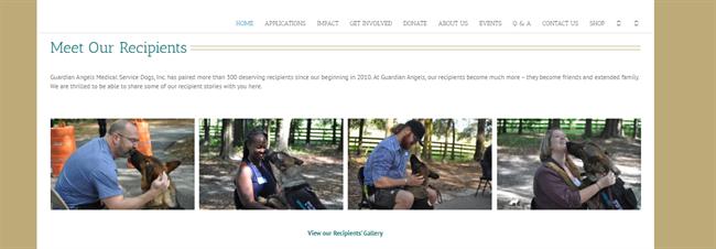 Guardian Angels Recipients best nonprofit website