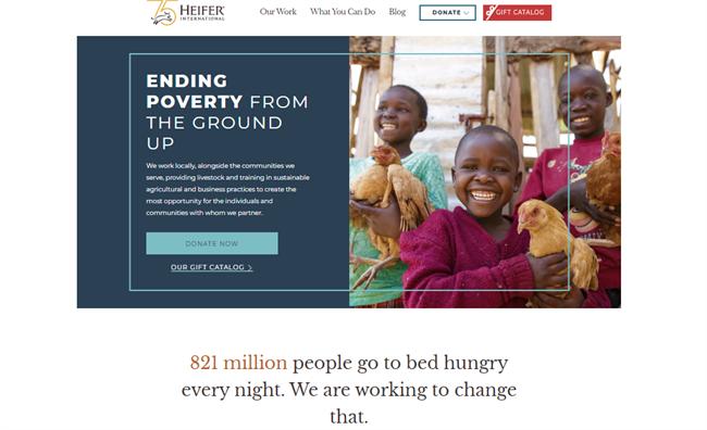 Heifer International best nonprofit website