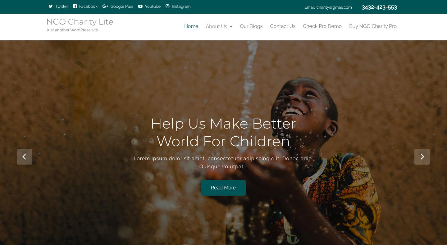 NGO Charity Lite