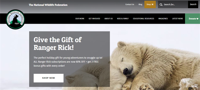 NWF best nonprofit website