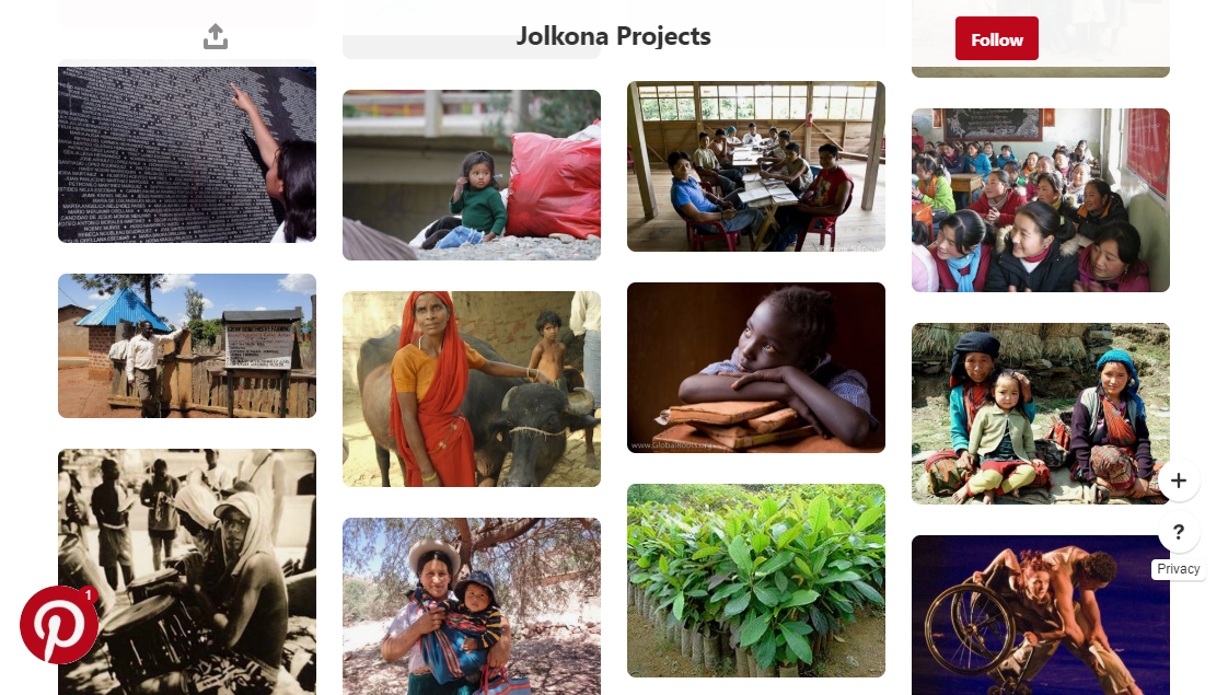 Pinterest project screenshot - nonprofit social media