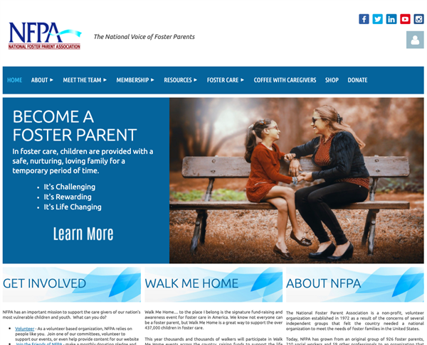 The National Foster Parent Association