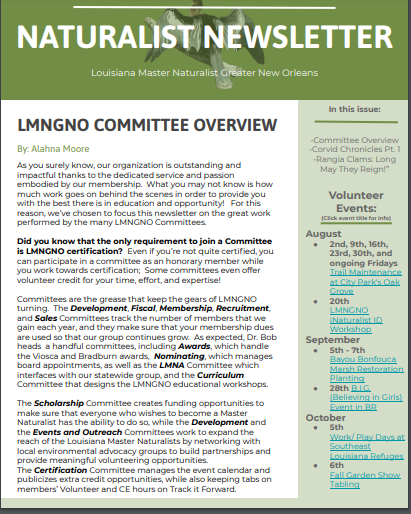 volunteer newsletter lousiana