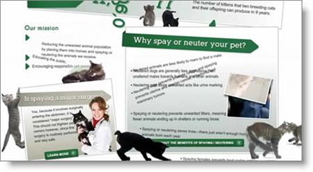 SpaysNotStrays.org screenshot