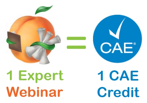 1 expert web equals 1 cae credit