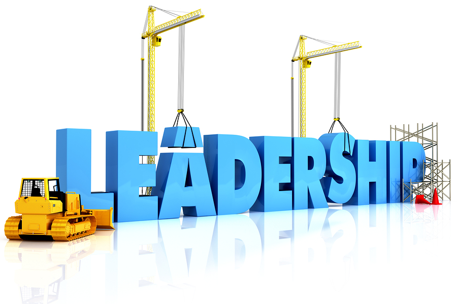 A New Way To Think About Leadership Development Wild Apricot