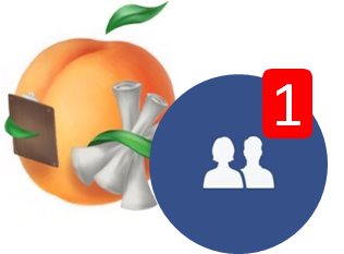 Facebook Mini-Course